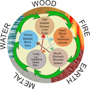 The Five Elements represent the cycle of elements of Fire, Earth, Metal, Water and Wood.  Is is an underlying principle in Taoist based therapies.