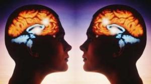 Scientists now understand that mirror neurons are essential to learning.
