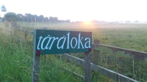 Taraloka is a beautiful retreat centre in Shropshire, run by members of the Triratna Buddhist Community.
